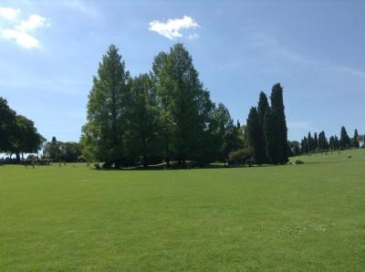 Parco Sigurta (87)