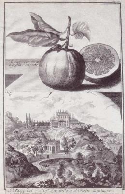 02 Villa Draghi Lucadello 1714 (1)